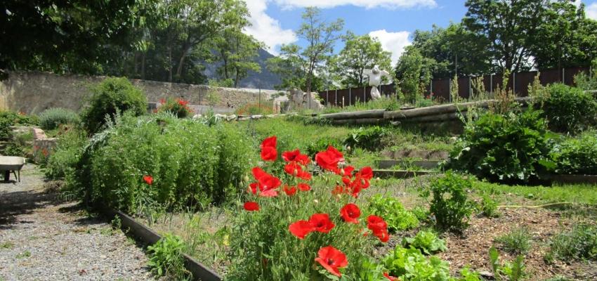Le jardin historique